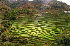 Sistelo: o pequeno Tibete português
