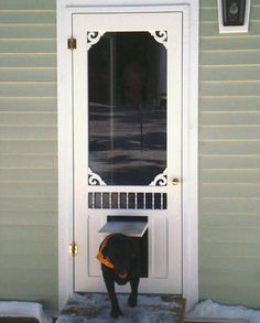 Perfect No Cutting Into Your House For The Doggie Door! This LARSON Storm Door  Comes With A Pet Door Already Built In. #ItsADogsLife #WelcomeHome #MyLarsu2026