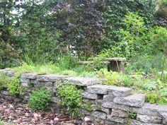 Stapelmuur met steenbreekvaren, muurleeuwenbek Garden Art, Outdoor Decor, Garden Design, Spring Garden, Garden Wall, Starting A Garden, Garden Lovers, Exterior, Backyard