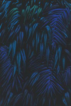 334_051_deep_blue2.b9663fb103761f133eb0c710f870560f.jpg (532×800)