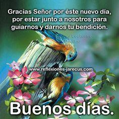 Buenos días, gracias Señor por éste nuevo día y por tu bendición Good Morning Good Night, Morning Wish, Good Morning Quotes, Spanish Greetings, Happy Week, Happy Wishes, Beautiful Butterflies, My Father, Lily