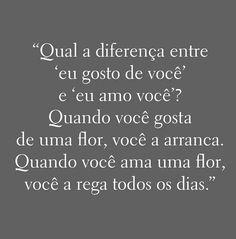 Liebes sprüche portugiesische 25 Sprüche