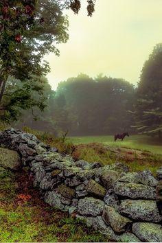 Beautiful World, Beautiful Places, Vie Simple, Beau Site, British Countryside, England And Scotland, Country Life, Country Living, Country Charm