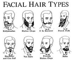facial hair style names different types of beards for style 8416 | f260a4cb80e558caf2efc3a9bbeae747