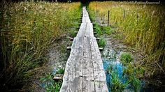 #follow #finland #travel #landscape #photography