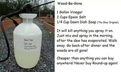 Safe Remedy: This will kill everything! It's great for driveways and areas that you don't want weeds or grass to grow.