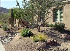 Sonoran Landesign Voted One Of Top Landscape Design Companies In USA.  Arizona, Phoenix, Scottsdale Landscaping Design, Installation Or Backyard  Remodeling.