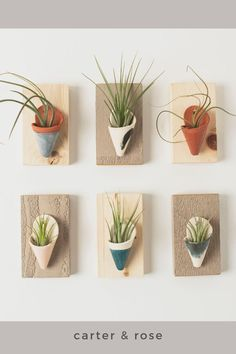 Ceramic wall planters are a great way to display plants and elevate your home decor. Air plants are low maintenance and the perfect addition to these handmade plant holders. Visit our online shop to see the entire collection of wall planters and styles that will match any home decor style. #carterandrose #houseplantclub #airplants