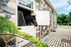 George Kamper photographs Martha Stewart for Equestrian Quarterly.