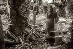 Highgate Cemetery - East IV by only-melancholy on DeviantArt