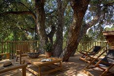 Saint Tropez, Treehouse Living, La Croix Valmer, Swimming Pools, France, Patio, Outdoor Decor, Plants, Hotels