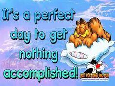 Perfect day to get nothibg accomplished
