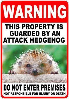 WARNING ATTACK hedgehog Pet Guard on Duty  sign vinyl lettering