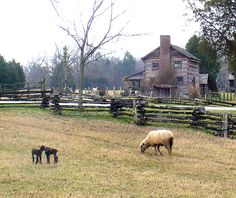 Appalachian farm