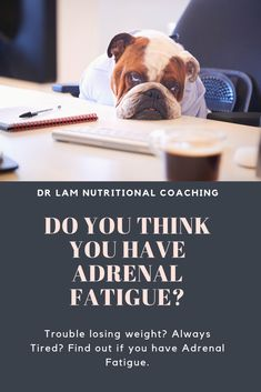 Think you might have Adrenal Fatigue? Take our quick test and see! Adrenal Health, Adrenal Fatigue, Health And Wellness, Health Fitness, Lack Of Energy, Home Remedies For Acne, Fatigue Syndrome, Chronic Stress, Skin Rash