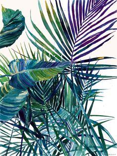 The jungle vol 2 Art Print #tropical #leaves #leaf