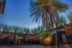 La Fleuriste - Corporativo Patio, Places, Outdoor Decor, Home Decor, Corporate Events, Decoration Home, Room Decor, Home Interior Design, Home Decoration