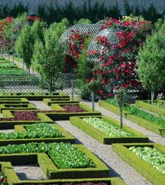 Le « Jardin Ecologique » de #Villandry http://www.my-loire-valley.com/2013/08/jardin-ecologique-villandry-aout/