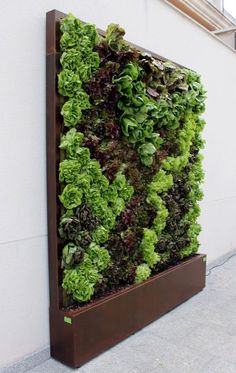 38 Popular Diy Vertical Garden Design Ideas To Try Asap - Do you live in the city and would love to have a vegetable garden, but are constrained by a small garden space? If you really want to grow your own fr. Vertical Garden Design, Small Garden Design, Vertical Farming, Vertical Gardens, Indoor Garden, Indoor Plants, Indoor Outdoor, Diy Garden, Outdoor Areas