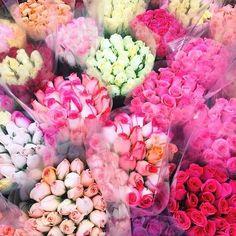 Bright pretties
