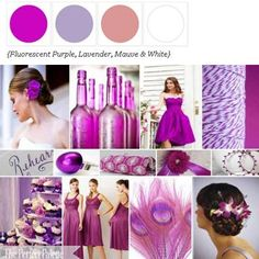 Shades of Purple + White via The Perfect Palette. xo