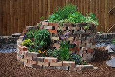 Permaculture garden makeover wins Best Business Entrance award ...