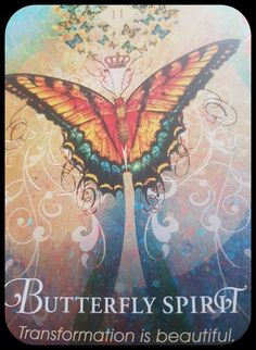 Spirit Animal Oracle ~Collette Baron Reid Butterfly Spirit Transformation is beautiful 🦋🦋🦋 Animal Meanings, Animal Symbolism, Butterfly Spirit Animal, You Are My Moon, Animal Spirit Guides, Angel Guide, Spirited Art, Angel Cards, Animal Totems