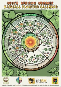 A3 size beautifully illustrated laminated planting calendar for summer rainfall areas in South Africa from Afristar available at www.ethical.org.za for R80