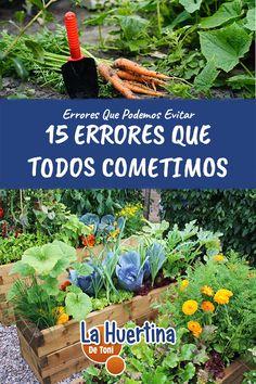 10 Ideas De Mi Huerto Huerto Huerto Urbano Jardín De Vegetales