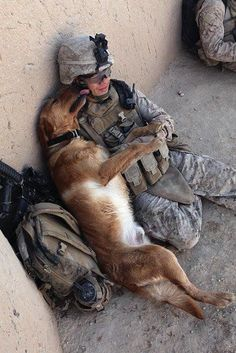 Do you think this dog cares he's in a war zone? Not as long as he's with dad, he doesn't...