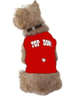 "Dog T Shirts    This innovative designer ""Top Dog"" dog T shirt is totally unique. It's fabulous for bigger dogs and very funny on the little ones. $"