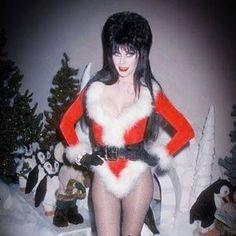 Elvira, ready for Christmas.