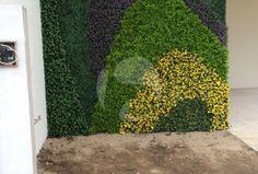 Muros Verdes en la Ciudad de Puebla