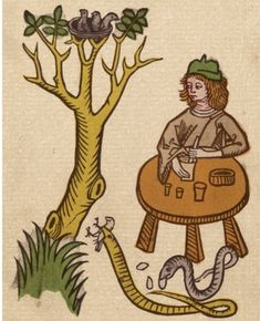 This 1491 woodcut from Jacob Meydenbach's Hortus Sanitatis (Garden of Health) depicts an apothecary using a pestle and mortar to extract tyriac from snake flesh while the snakes are eating birds and their eggs. In the medieval period, tyriac was used to treat poisonous bites.