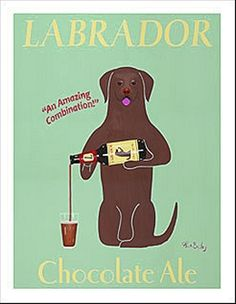 labrador chocolate ale