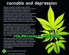 PTSD AND CANNABIS – YourCannaLife