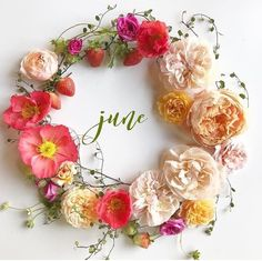 Shared by Find images and videos about flowers, spring and june on We Heart It - the app to get lost in what you love. Seasons Months, Days And Months, Seasons Of The Year, Months In A Year, 12 Months, Deco Floral, Art Floral, New Month Wishes, Welcome June