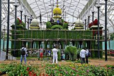 """""""A palace is blooming in Lalbagh"""" What's happenings around u find out at GISMaark Mirror other visit to read http://www.gismaark.com/MirrorView.aspx"""