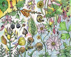Tommy Kane's Art Blog: Mary's Garden