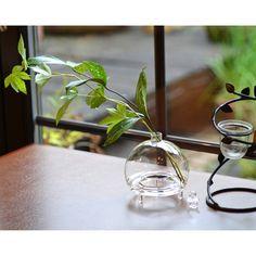 レトロなルックスが美しい虫取り器。電気も薬も使わず、エコでお子さんがいても安心です。また「花器」や「アロマポット」としても使用できます。