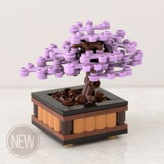 Bonsai Tree: Lilac