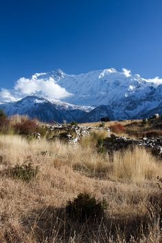 On the way to Praken Gompa (3945 m), Manang Valley, Nepal (by Ludon).