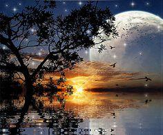 """Post #: """"Que a harmonia desta noite linda abrace o seu coração e te traga a tranquilidade de um descanso abençoado."""" Boa noite a todos! lindos sonhos..."""