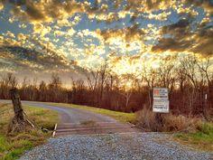 Levee - Greenville, Mississippi - Flat Out Delta - Mississippi Delta ...