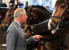 Britain's Prince Charles speaks to a mounted policeman (not pictured) as he visits the New South Wales Mounted Police Unit in Sydney, Australia, November 12, 2015. REUTERS/Craig Greenhill/Pool