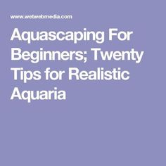 Aquascaping For Beginners; Twenty Tips for Realistic Aquaria