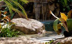 Cristal Pool - Revestimentos Exclusivos para Piscinas