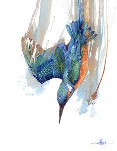 Kingfisher/Kotare Dive by Rachel Walker Watercolor Animals, Watercolor And Ink, Watercolor Paintings, Nz Art, Bird Artwork, Bird Drawings, Kingfisher, Animal Paintings, Rachel Walker