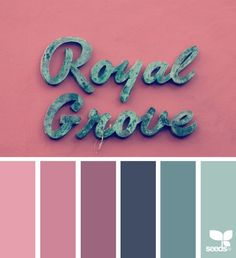 color grove | design seeds | Bloglovin'