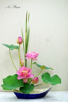Pink lotus floral arrangement designed by Nụ Phạm.